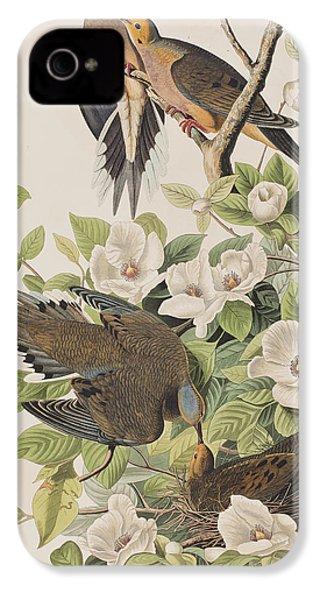Carolina Turtle Dove IPhone 4 / 4s Case by John James Audubon