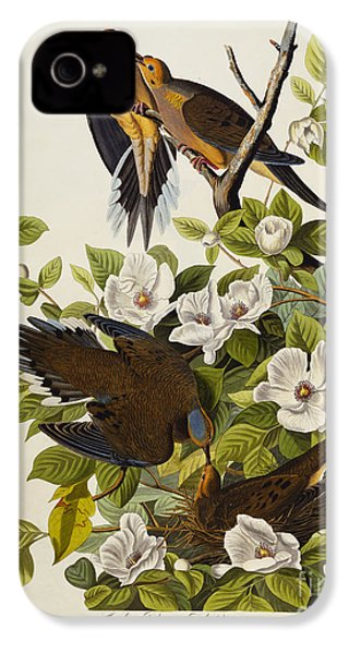 Carolina Turtledove IPhone 4 / 4s Case by John James Audubon
