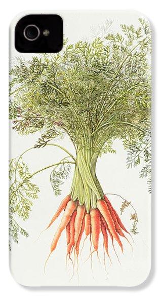 Carrots IPhone 4 Case