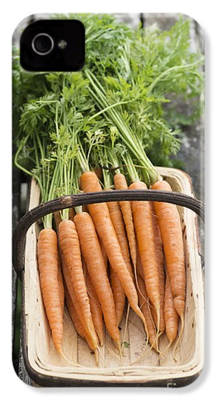 Carrots IPhone 4 Case by Tim Gainey