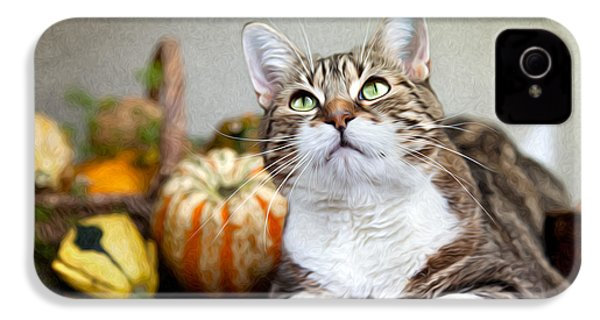 Cat And Pumpkins IPhone 4 Case by Nailia Schwarz