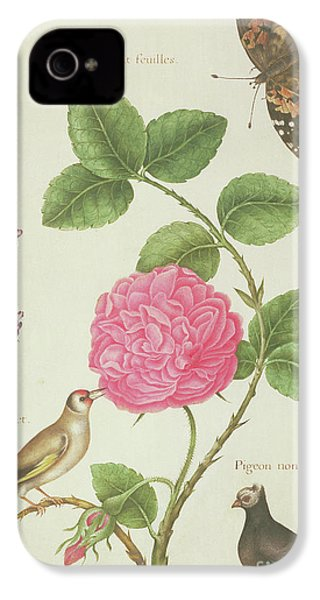 Centifolia Rose, Lavender, Tortoiseshell Butterfly, Goldfinch And Crested Pigeon IPhone 4 Case by Nicolas Robert