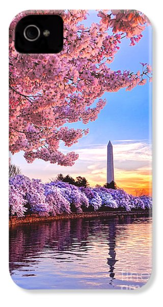 Cherry Blossom Festival  IPhone 4 Case by Olivier Le Queinec