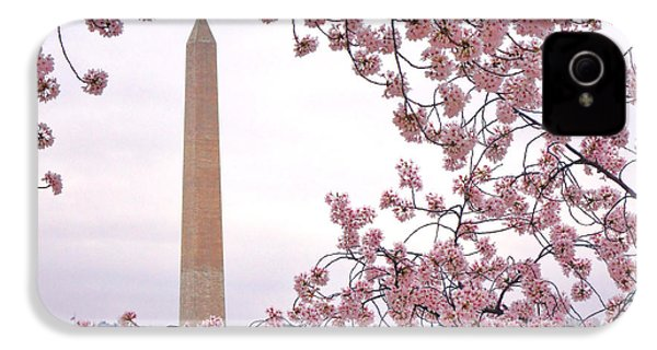 Cherry Washington IPhone 4 / 4s Case by Olivier Le Queinec