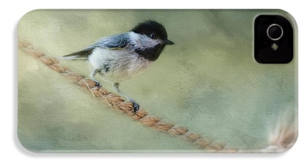 Chickadee At The Shore IPhone 4 / 4s Case by Jai Johnson