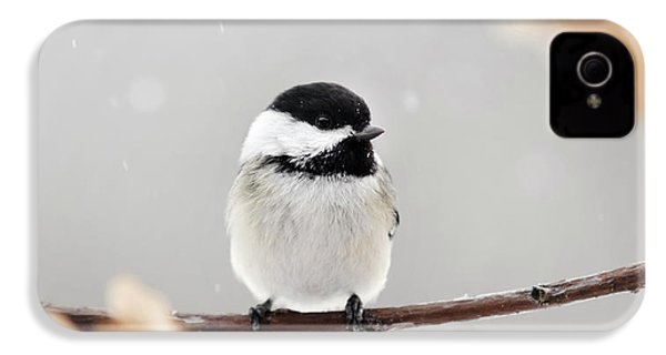IPhone 4 Case featuring the photograph Chickadee Bird In Snow by Christina Rollo