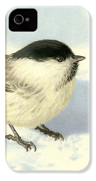 Chilly Chickadee IPhone 4 Case by Sarah Batalka