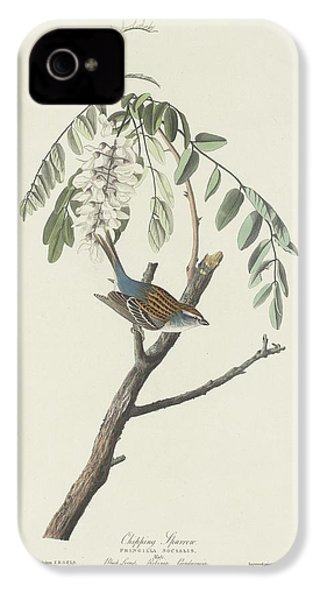 Chipping Sparrow IPhone 4 Case by Rob Dreyer