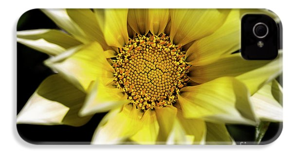 IPhone 4 Case featuring the photograph Chrysanthos by Linda Lees
