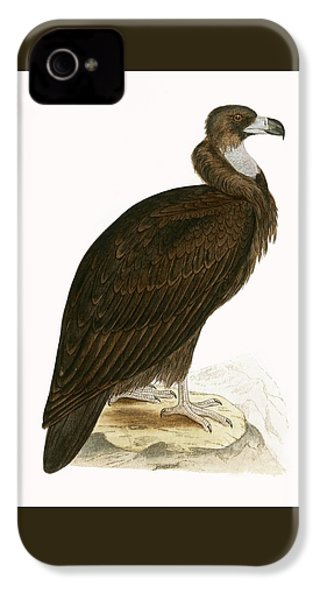 Cinereous Vulture IPhone 4 Case by English School