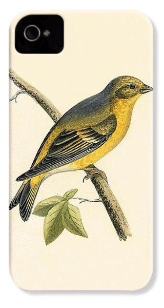 Citril Finch IPhone 4 Case