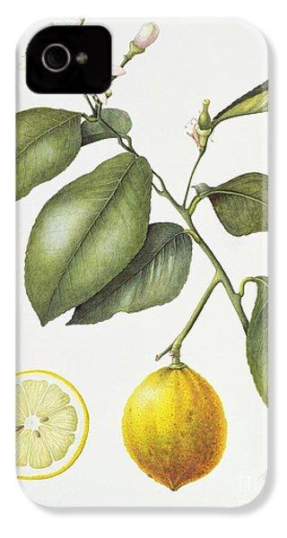 Citrus Bergamot IPhone 4 Case