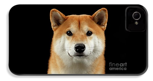 Close-up Portrait Of Head Shiba Inu Dog, Isolated Black Background IPhone 4 Case by Sergey Taran