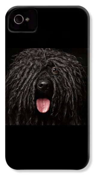 Close Up Portrait Of Puli Dog Isolated On Black IPhone 4 Case by Sergey Taran