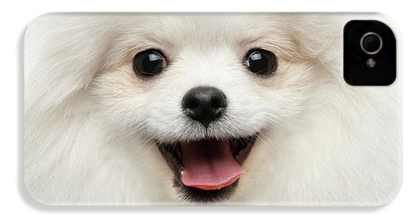 Closeup Furry Happiness White Pomeranian Spitz Dog Curious Smiling IPhone 4 Case by Sergey Taran