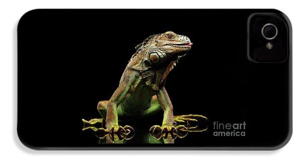 Closeup Green Iguana Isolated On Black Background IPhone 4 Case by Sergey Taran