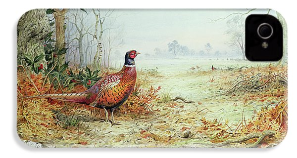 Cock Pheasant  IPhone 4 Case by Carl Donner