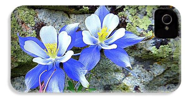 IPhone 4 Case featuring the photograph Colorado Columbines by Karen Shackles