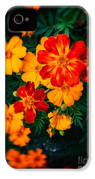 IPhone 4 Case featuring the photograph Colorful Flowers by Silvia Ganora