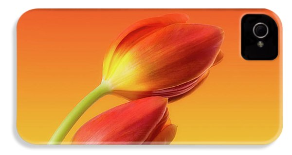 Colorful Tulips IPhone 4 Case by Wim Lanclus