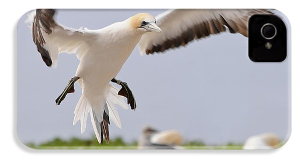 Coming In To Land IPhone 4 Case by Werner Padarin