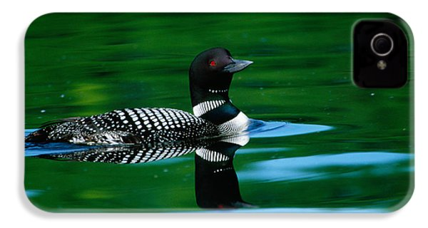 Common Loon In Water, Michigan, Usa IPhone 4 / 4s Case by Panoramic Images