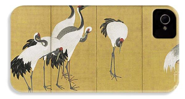 Cranes IPhone 4 Case by Maruyama Okyo