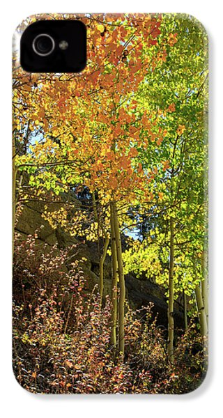 Crisp IPhone 4 Case by David Chandler