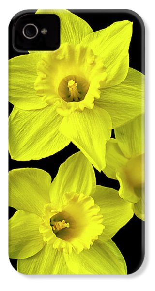 IPhone 4 Case featuring the photograph Daffodils by Christina Rollo