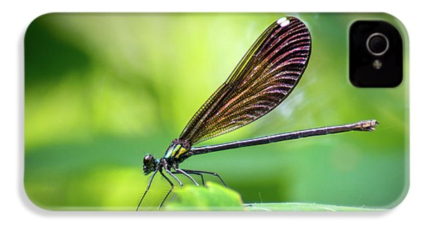 IPhone 4 Case featuring the photograph Dark Damsel by Bill Pevlor