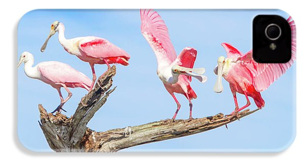 Day Of The Spoonbill  IPhone 4 Case by Mark Andrew Thomas