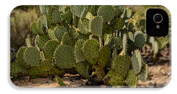 Desert Prickly-pear No6 IPhone 4 Case by Mark Myhaver