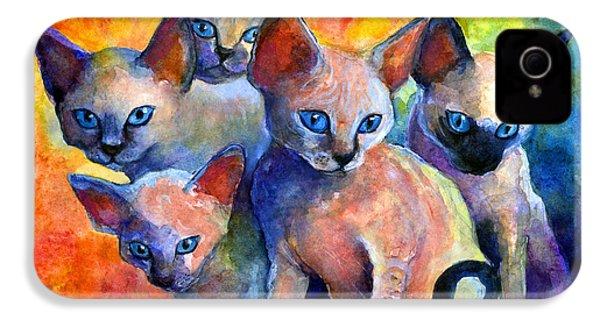 Devon Rex Kitten Cats IPhone 4 / 4s Case by Svetlana Novikova