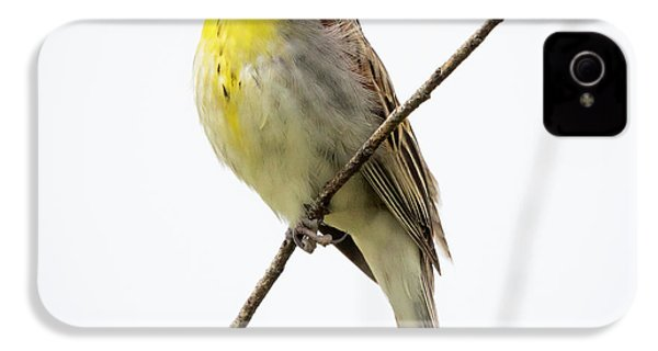 Dickcissel  IPhone 4 Case