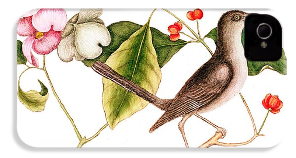 Dogwood  Cornus Florida, And Mocking Bird  IPhone 4 Case by Mark Catesby