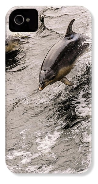 Dolphins IPhone 4 Case by Werner Padarin