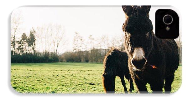 Donkey And Pony IPhone 4 Case