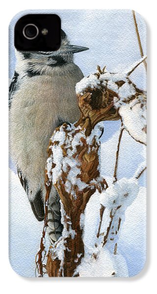 Downy Woodpecker  IPhone 4 Case by Ken Everett