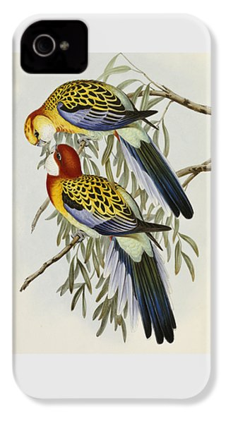 Eastern Rosella IPhone 4 Case by John Gould