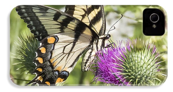 Eastern Tiger Swallowtail IPhone 4 Case by Ricky L Jones