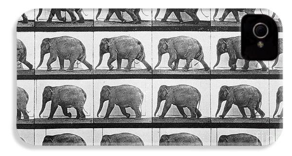 Elephant Walking IPhone 4 Case by Eadweard Muybridge