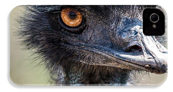 Emu Eyes IPhone 4 / 4s Case by Paul Freidlund