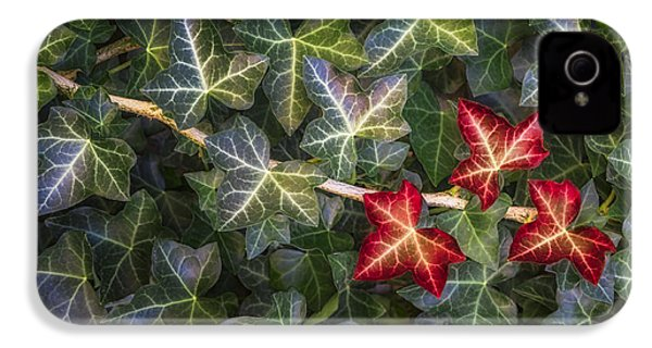 IPhone 4 Case featuring the photograph Fall Ivy Leaves by Adam Romanowicz