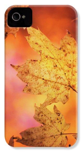 Fall Reveries IPhone 4 Case by Priya Saihgal