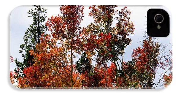IPhone 4 Case featuring the photograph Festive Fall by Karen Shackles