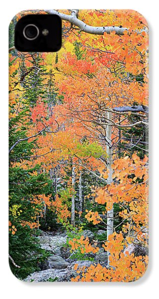 Flaming Forest IPhone 4 Case by David Chandler