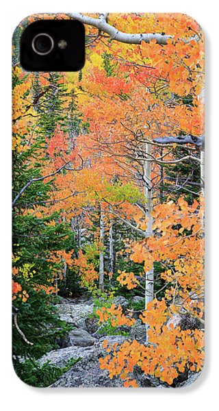IPhone 4 Case featuring the photograph Flaming Forest by David Chandler
