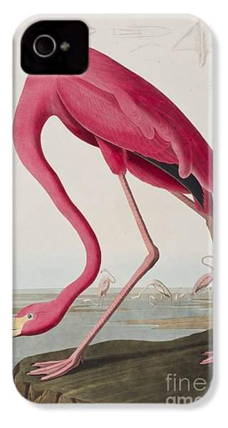 Flamingo IPhone 4 / 4s Case by John James Audubon