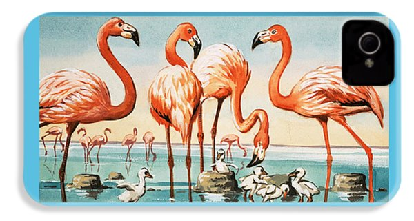 Flamingoes IPhone 4 Case