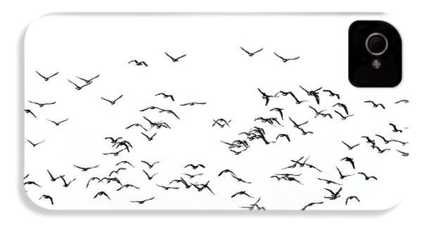 Flock Of Beautiful Migratory Lapwing Birds In Clear Winter Sky I IPhone 4 Case by Matthew Gibson
